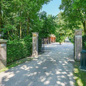 00000012-Fagus-sylvatica-beech-hedge-country-estate-villa-garden-driveway-formal