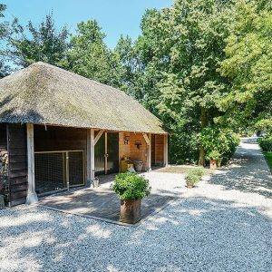 00000014-Fagus-sylvatica-beech-country-estate-cottage-driveway-entry-parking-landscape