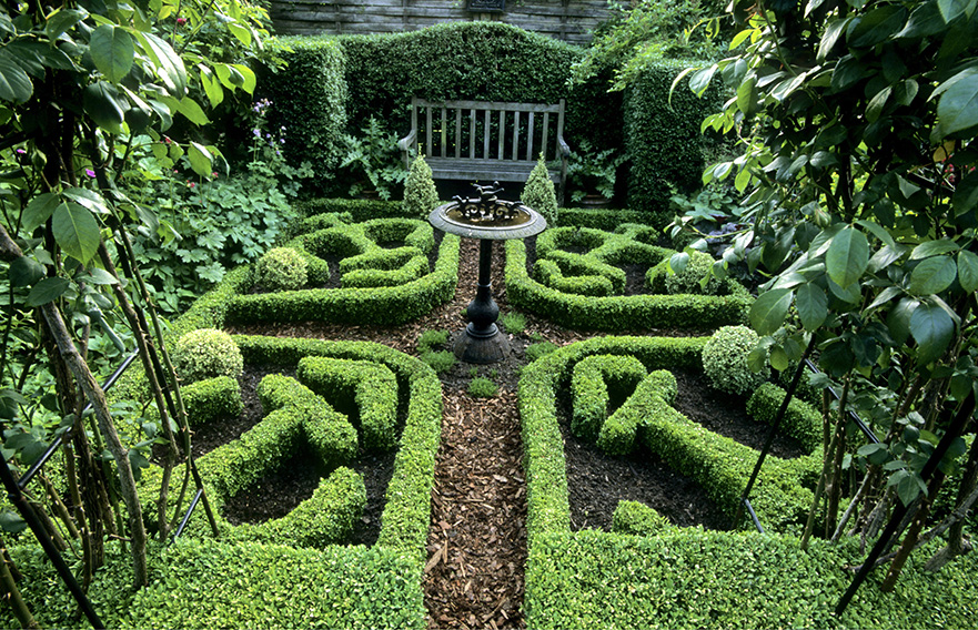 00743560-buxus-boxwood-knot-garden-low-border-cottage-country-home-estate-historic