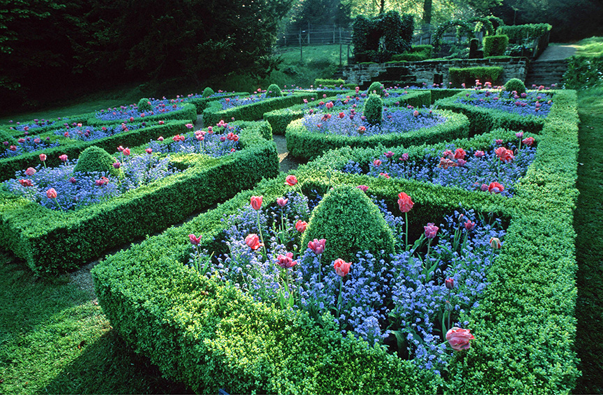 00744498-Buxus-formal-flower-garden