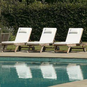 00750695-Fagus-beech-hedge-privacy-formal-modern-design-estate-Pool