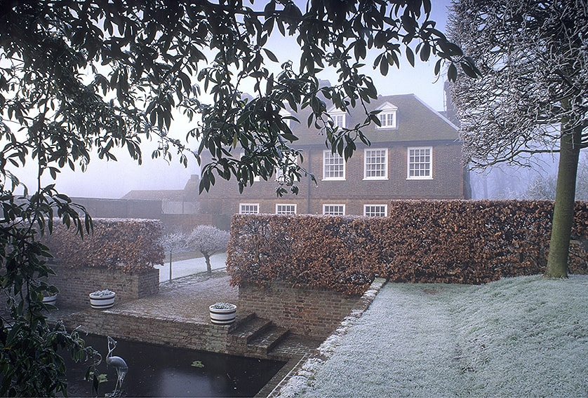 01058465-Fagus-beech-hedge-winter-frost-estate-cottage-wall-winter-leaves