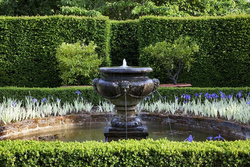 01058883-Buxus-Taxus-estate-park-public-fountain-min