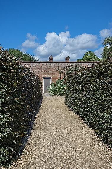 1156571695-fagus-beech-hedge-purple-copper-path-driveway-country-cottage-garden