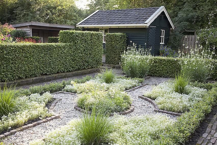 14508-Fagus-beech-privacy-hedge-country-garden-urban-suburban