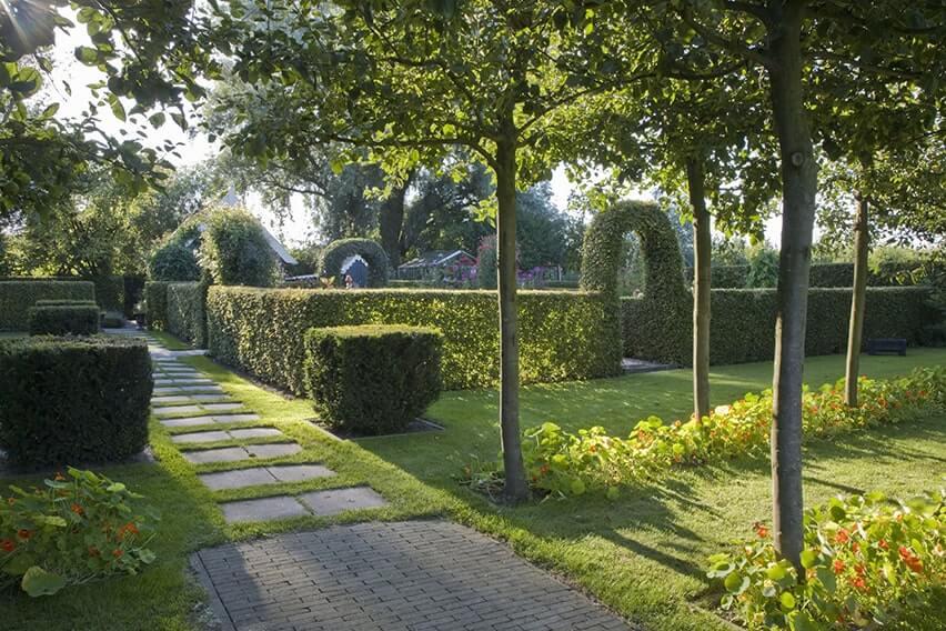 20729-Taxus-yew-Fagus-beech-hedge-formal-modern-garden-arch-path-stone