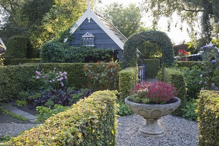 20738-Fagus-beech-hedge-formal-country-garden-cottage-flowers-summer-courtyard