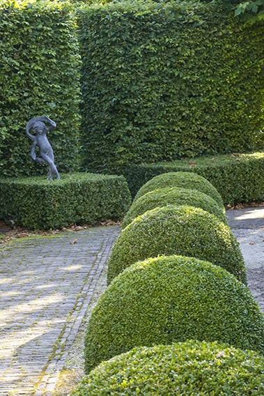 21353-Fagus-beech-Buxus-boxwood-hedge-modern-garden-design-sculpture-contemporary-stone-path