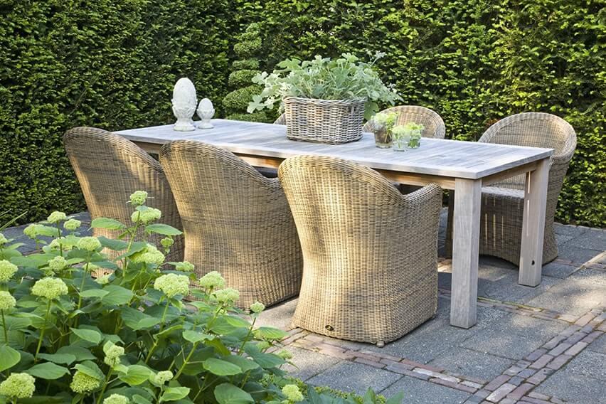 23878-Taxus-yew-country-modern-garden