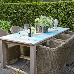 23881-Taxus-yew-country-modern-garden