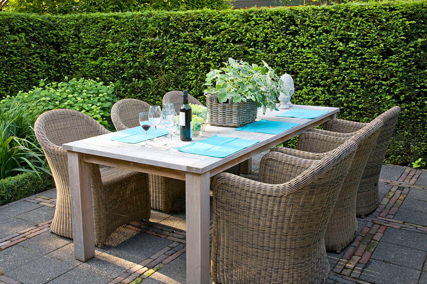 23881-Taxus-yew-country-modern-garden-cottage-patio-privacy-outdoor-dining