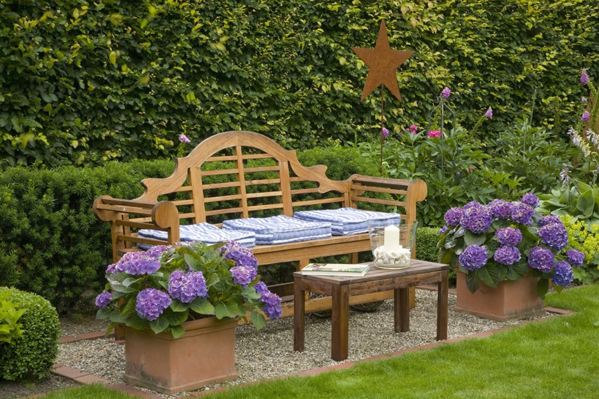 24043-Fagus-beech-Taxus-yew-country-cottage-garden-hedge-privacy-bench-peaceful-hydrangea