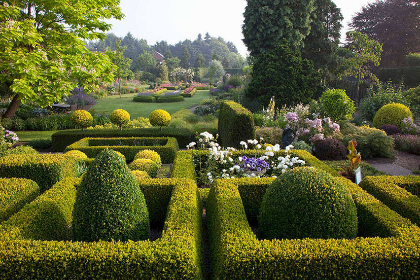27833-buxus-boxwood-knot-garden-low-border-cottage-country-large-spacious-sloped-estate-acreage