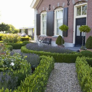 28328-buxus-boxwood-knot-garden-low-border-paths-country-estate-cottage-manor-park-historic