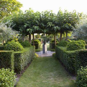 28600-Taxus-yew-Prunus-laurel-hedge-modern-garden