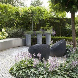 32440-Taxus-yew-hedge-modern-garden