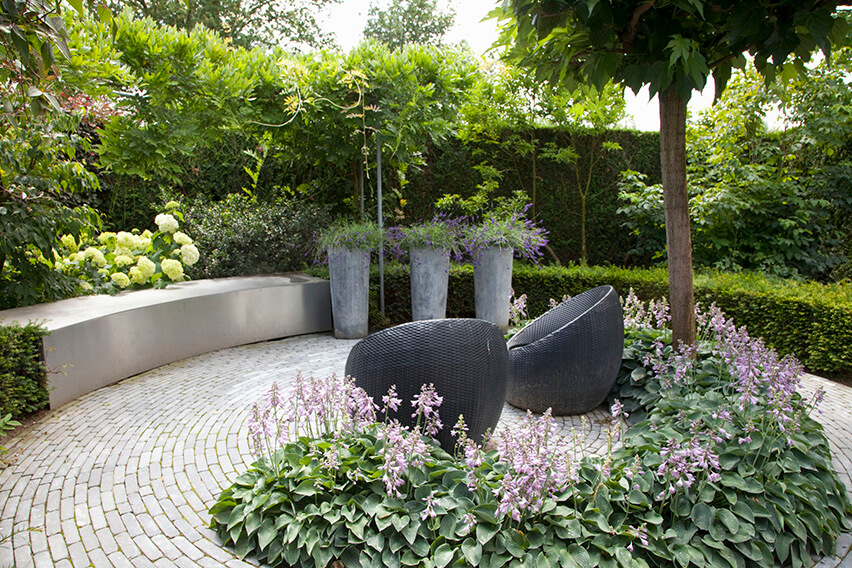 32440-Taxus-yew-hedge-modern-garden-patio