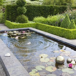 34283-Buxus-boxwood-Taxus-yew-hedge-formal-modern-estate-garden-fountain