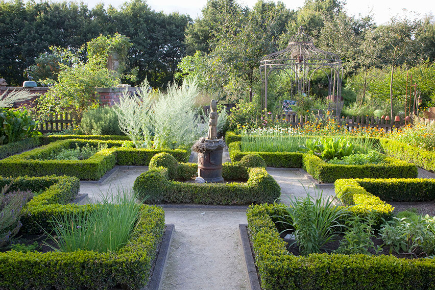 34764-Buxus-boxwood-hedge-estate-formal-knot-garden