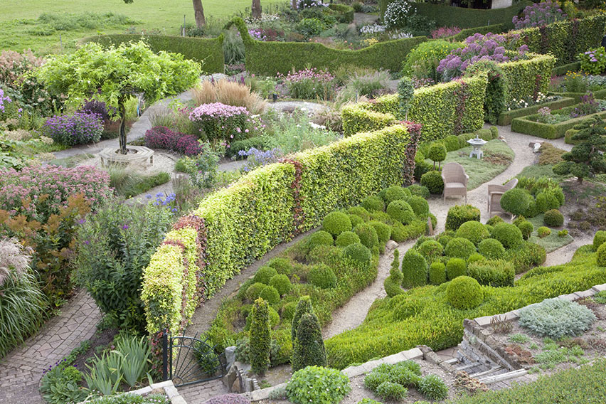 34883-Fagus-hedge-beech-path-formal-estate-garden