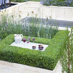 37058-Buxus-boxwood-hedge-modern-estate-garden-outdoor-living-natural-flower-bed