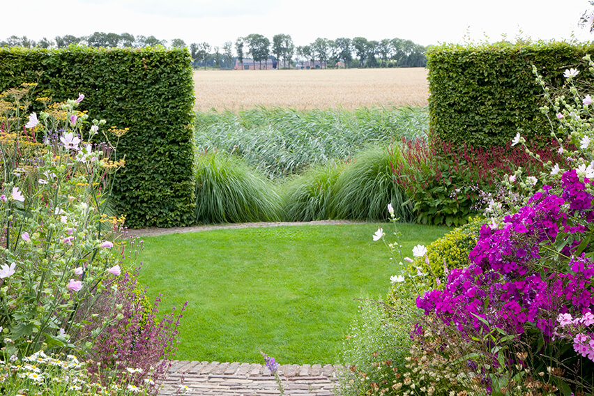 37283-Fagus-Beech-hedge-country-estate-rural-view-grass-field-farm-house-garden