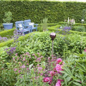 38513-Fagus-Beech-boxwood-Buxus-hedge-country