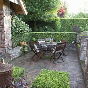 43812-Buxus-boxwood-hedge-country-garden-patio-suburban-outdoor-dining