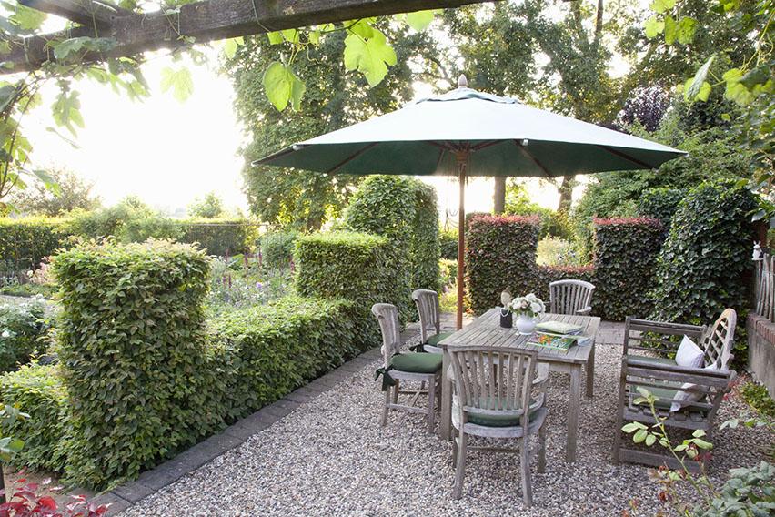 56964-fagus-beech-green-purple-mixed-hedge-patio-outdoor-dining-suburban-garden-room-window-border-table-bench