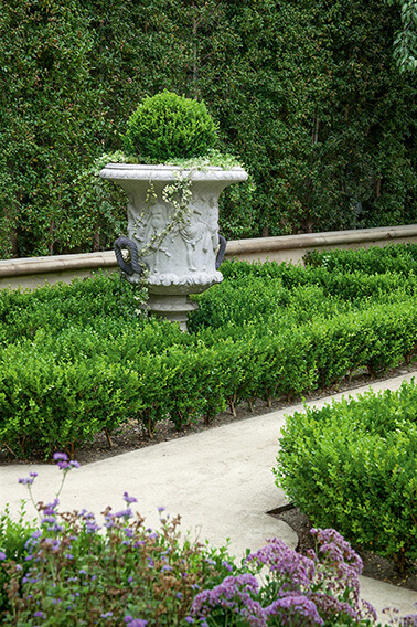 N1004179_140-Buxus-courtyard-country-garden