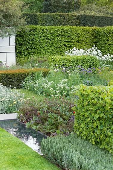N1005442_140-Taxus-Fagus-yew-laurel-hedge-modern-garden-water-pond-rock-cottage
