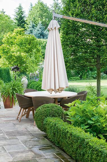 N1006019_140-Buxus-boxwood-suburban-garden-patio