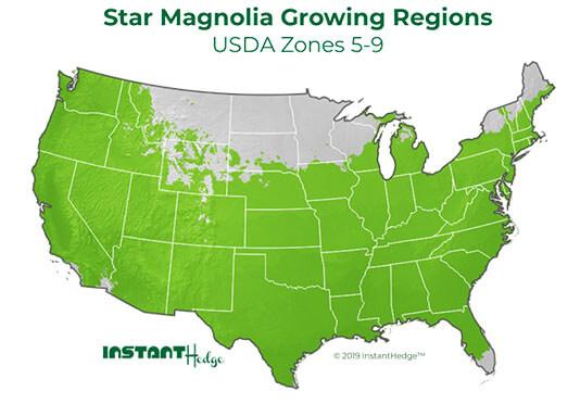 Screening plants region