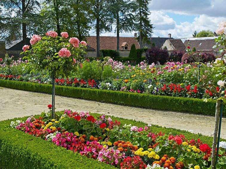 shutterstock_1009006879-Buxus-country-estate-park-garden