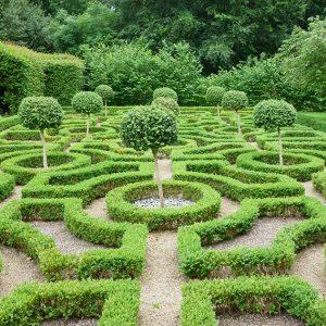 shutterstock_499693663-buxus-boxwood-knot-garden-display-park-estate