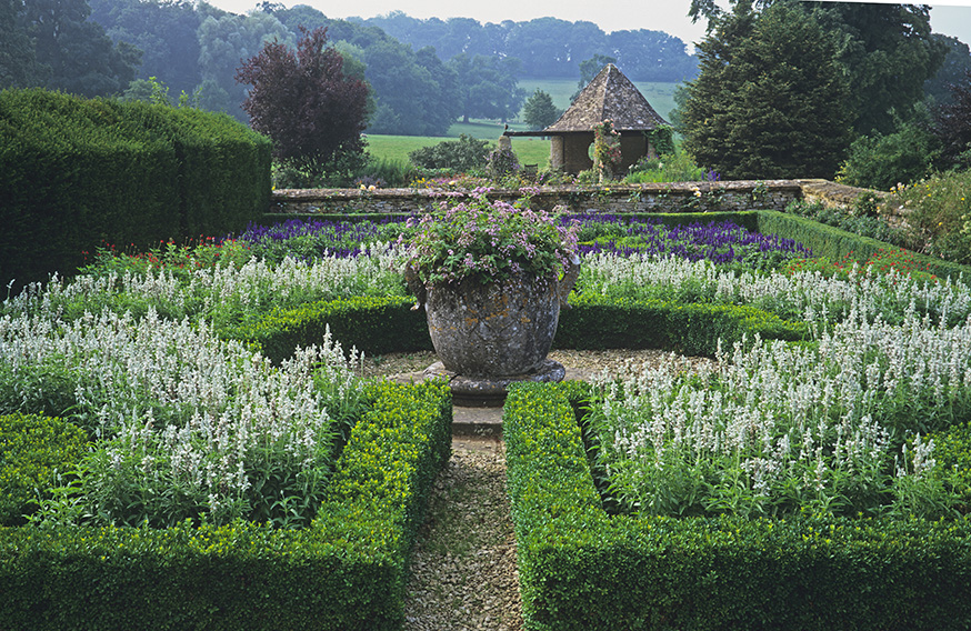 shutterstock_620901437-Buxus-boxwood-taxus-yew-estate-country