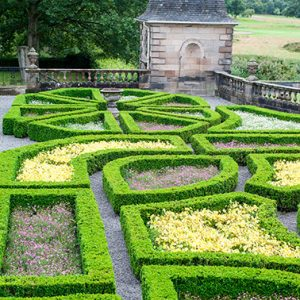 shutterstock_642584443-Buxus-formal-knot-estate-country