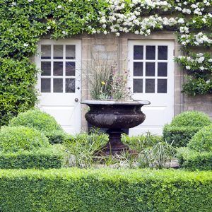 shutterstock_669295120-buxus-boxwood-knot-garden-low-border-cottage-country-rustic-estate