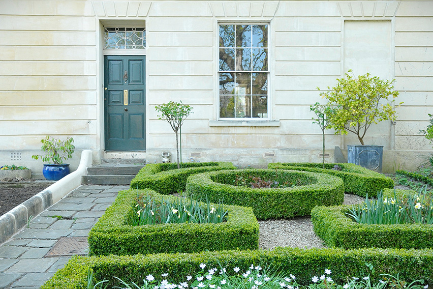 shutterstock_797387416-buxus-boxwood-knot-garden-low-border-cottage-estate-spring-daffodil-flower