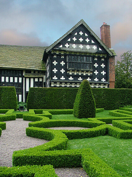 187485-buxus-boxwood-knot-garden-estate-resort-park