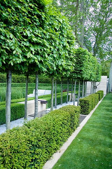229027474-buxus-taxus-garden-room-fountain-park-commercial