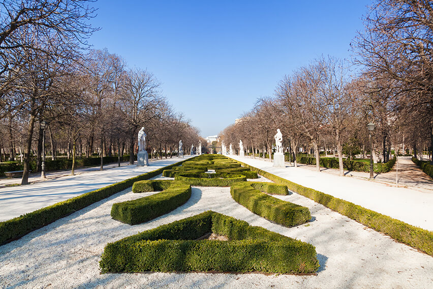 265999853-buxus-boxwood-knot-garden-government-park-estate-winter