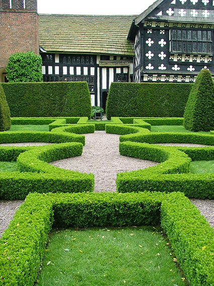 363759-buxus-boxwood-knot-garden-estate-resort-park