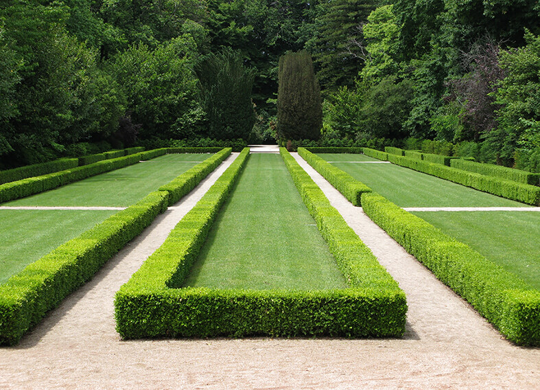 4748848-buxus-boxwood-border-knot-garden-park-estate
