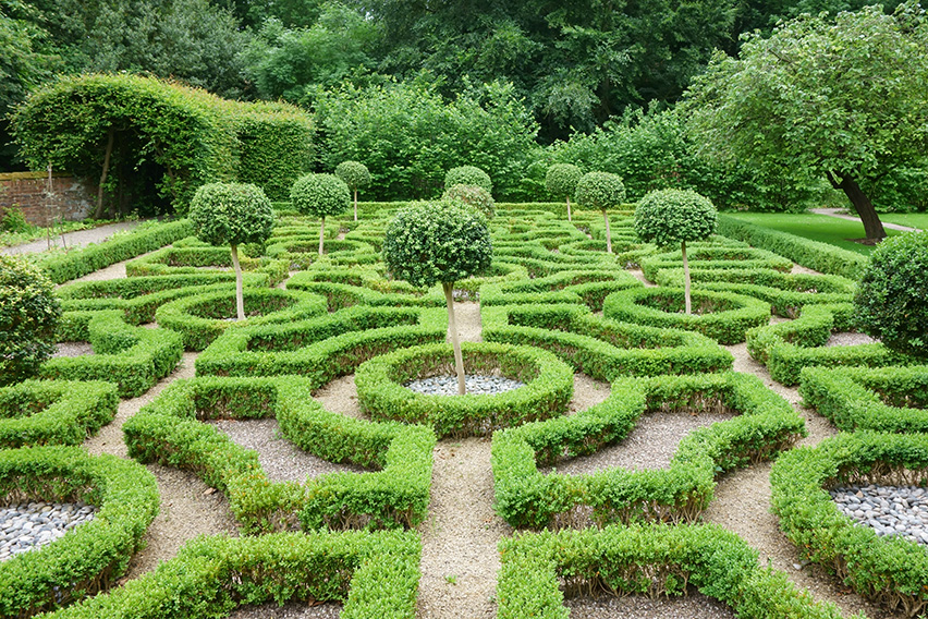 499693663-buxus-boxwood-knot-garden-display-park-estate