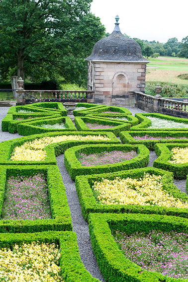 642584443-Buxus-formal-knot-estate-country