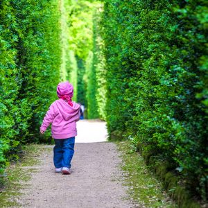 664287787-maze-garden-child-running-hedge-tall