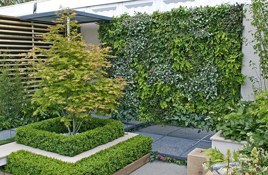674739961-Buxus-courtyard-modern-suburban-urban-patio