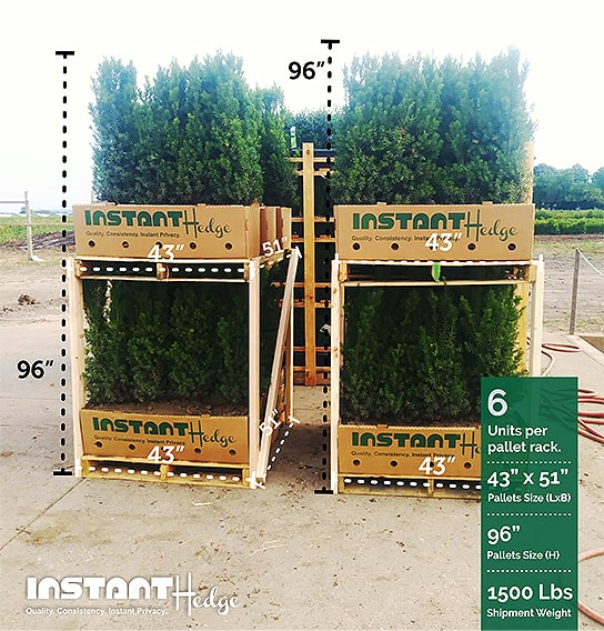 InstantHedge-three-four-foot-tall-hedge-shipping-rack-stack-harvested-pallets