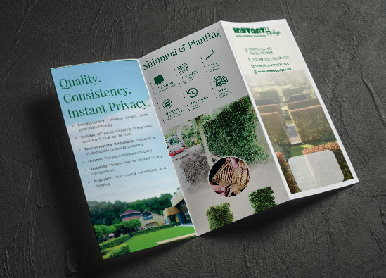 InstantHedge Brochure